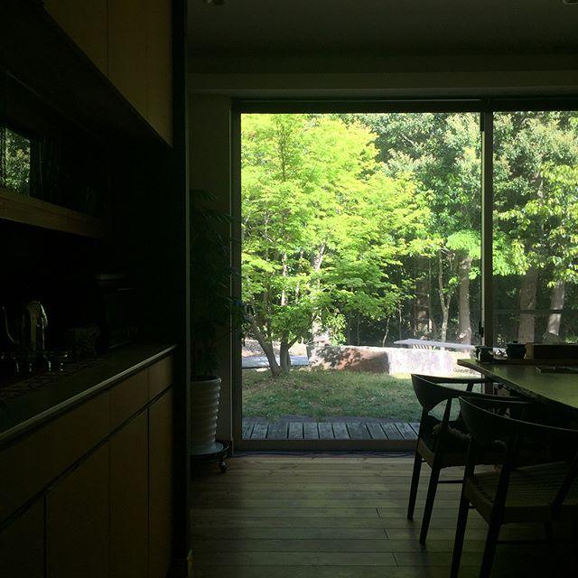 清々しい朝です。冷たい風が眠気を飛ばし、体を起こして頭もスッキリ!やっぱり太陽の光は気分を高めてくれます。こんな日はドライブしたいなぁ〜〜。 #五月晴れ #新緑 #ドライブ日和 #紅葉 #自宅 #ラグデザイン