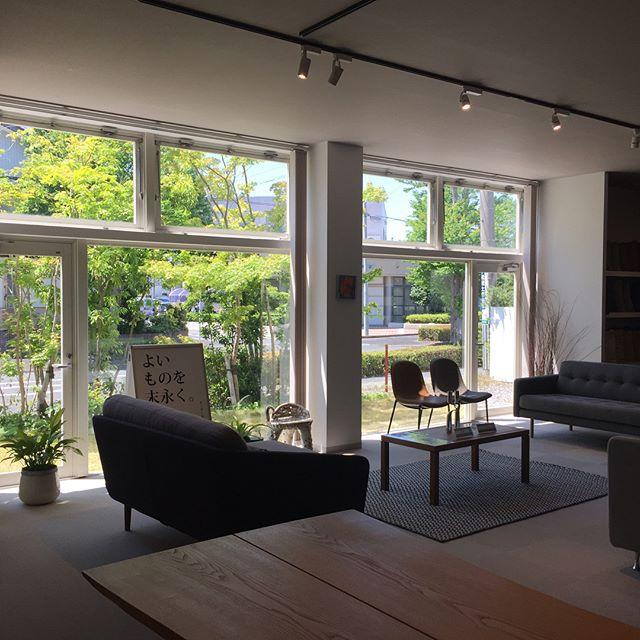 窓越しの景色は大切に。#窓 #設計 #庭 #ラグデザイン