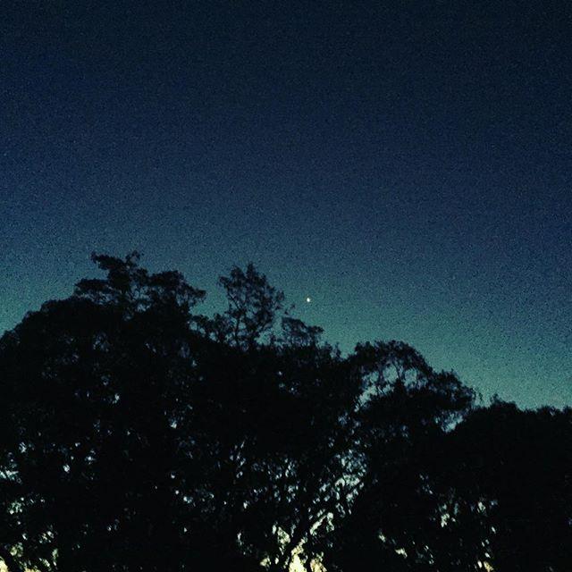 冬が近づいてくる夜明けの青色が深く、清く、希望的で大好きです。今日の事、未来の事を思いながら、前進していきたいですね。今日も一日楽しもう!#夜明け #青 #青空 #希望 #未来 #想い #ラグデザイン